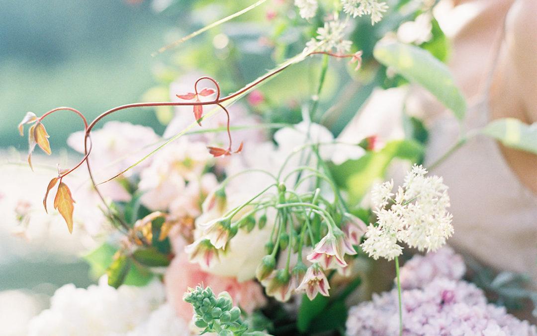 Wedding Sparrow Summer Editorial