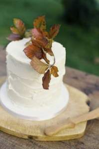 Wedding Cake, simple wedding cake